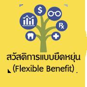 flexben-icon